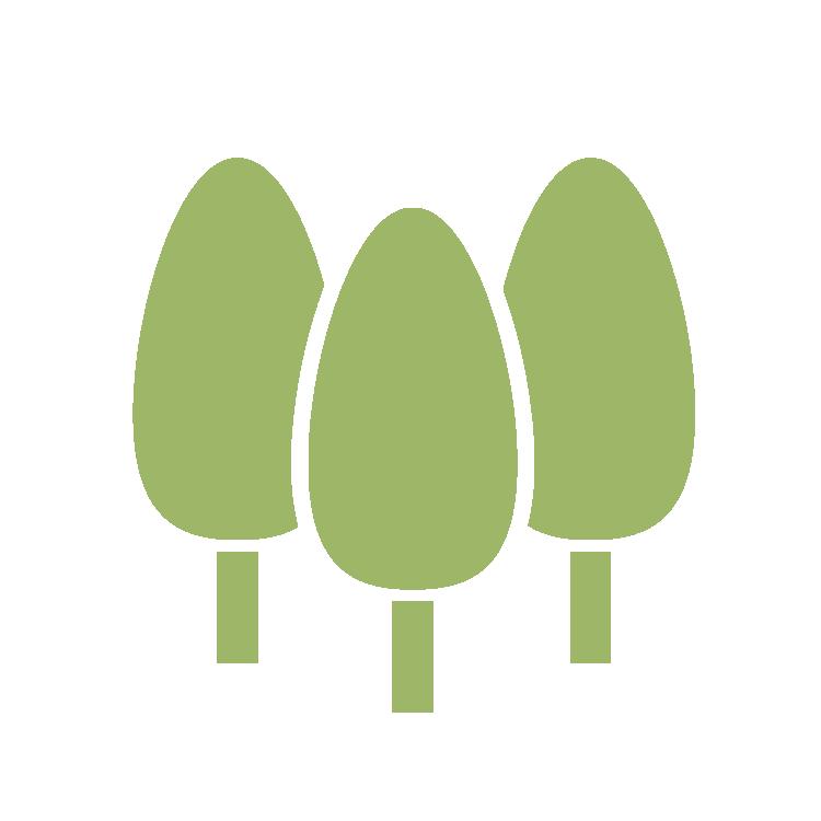 Schrieverswold | Drie groene bomen