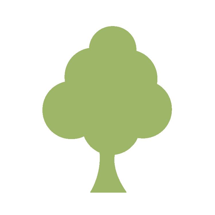 Schrieverswold | Groene boom