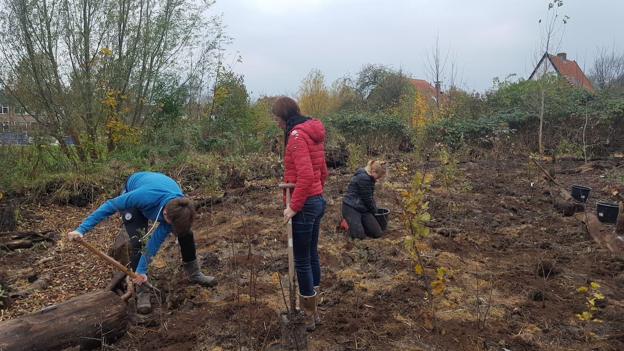 Schrieverswold | Plantdag | Robin, Astrid en Christiaan