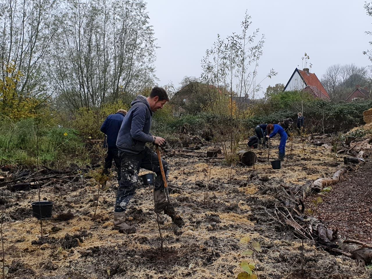 Schrieverswold | Plantdag | Vrijwilligers