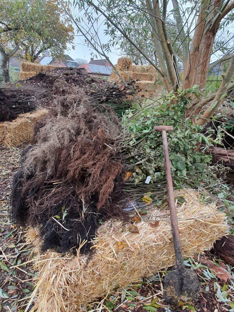 Schrieverswold | Plantdag | Bosplantsoen