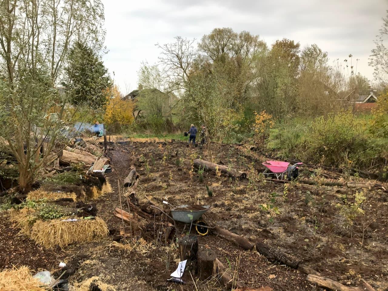 Plantdag Schrieverswold | Plantvak A | Bosplantsoen