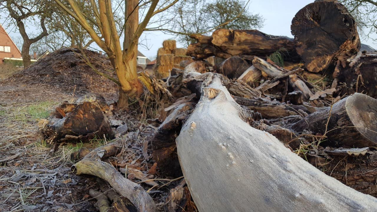 Paden aanleggen met houtsnippers   Schrieverswold