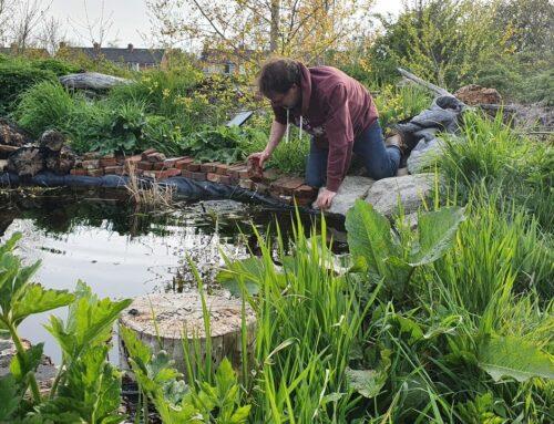 Tuinieren en vijveronderhoud